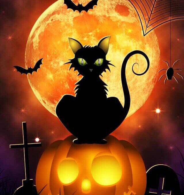 October Half Term & Halloween at Turnberrie's